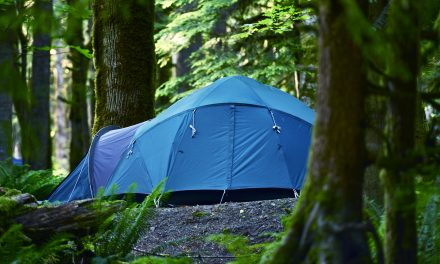5 Amazing Best 10 Person Tent That Actually Works